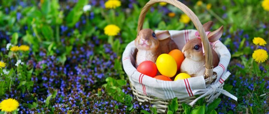Autóbérlés Húsvétkor!